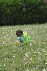 2005 Lourdes Pilgrimage (243/352)