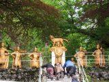 2007 Lourdes Pilgrimage (304/591)