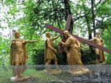 2007 Lourdes Pilgrimage (308/591)