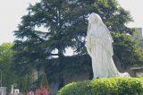 2008 Lourdes Pilgrimage (70/286)