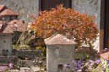 2009 Lourdes Pilgrimage (107/437)