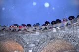 2011 Lourdes Pilgrimage - Favorites (30/38)