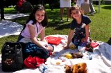 2011 Lourdes Pilgrimage - Kids Picnic (1/17)