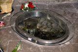 2011 Lourdes Pilgrimage - Upper Basilica Mass (63/67)