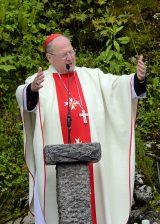 2013 Lourdes Pilgrimage - SATURDAY TRI MASS GROTTO (83/140)