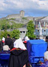 2013 Lourdes Pilgrimage - SATURDAY Procession Benediction Pius Pius (9/44)