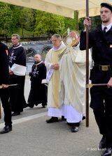 2013 Lourdes Pilgrimage - SATURDAY Procession Benediction Pius Pius (19/44)